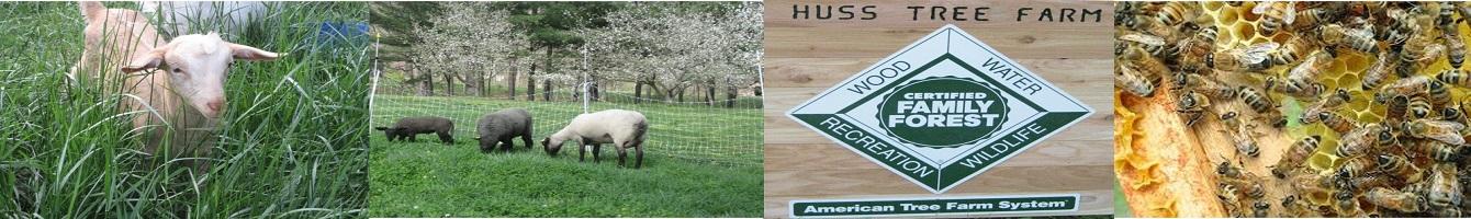 Huss Farms
